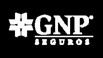 Logo-GNP-White.png